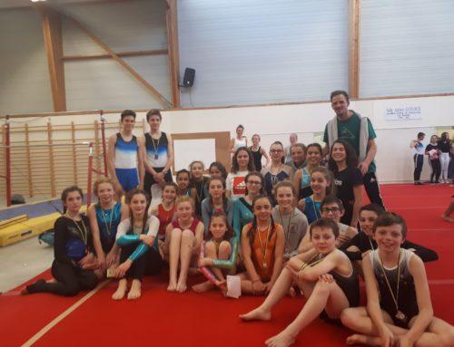 Championnat régional de gymnastique à Vannes le mercredi 27 mars