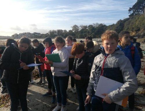 Temps fort de rentrée des 5èmes dans le Finistère